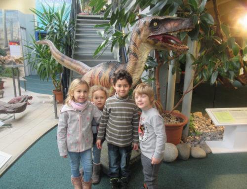 Besuch im Sauriermuseum